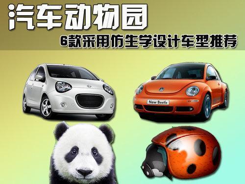 汽车动物园 6款仿生学设计车型推荐(图)