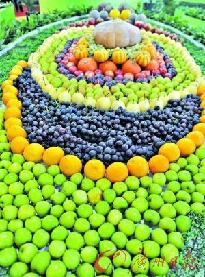网购有机蔬果平过市面两成
