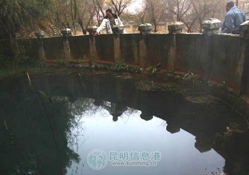 昆明一养殖小区粪水污染水源 千余村民被迫喝脏水