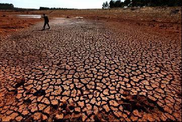 西南大旱造成大面积粮食绝收 坊间频传粮价将上涨