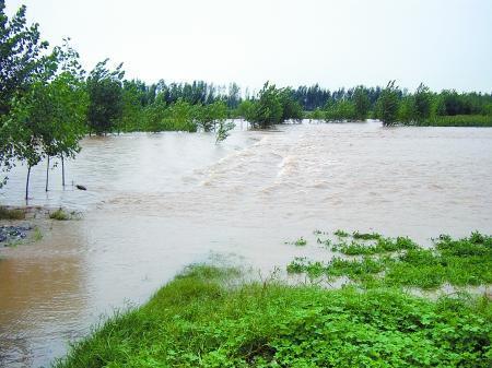 河南新乡部分县市遭暴雨袭击 59人被困获救