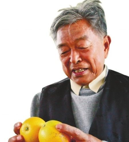 褚时健85岁仍奋斗在创业路上成励志标兵