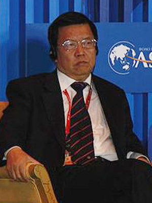 龙永图 热钱对中国不是问题 对投资不要进行强力控制