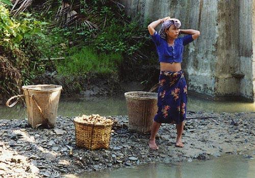 孟加拉/在河边的孟加拉妇女
