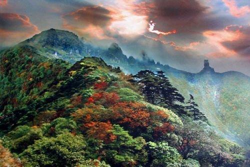贵州梵净山旅游攻略(6)