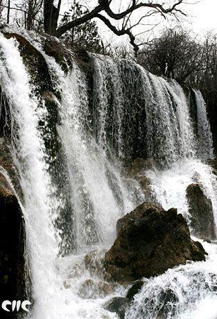 壁纸 风景 旅游 瀑布 山水 桌面 313_460 竖版 竖屏 手机