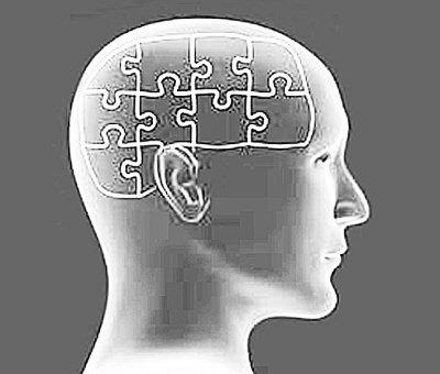 """大脑玩""""拼图游戏"""" 科学家提出记忆形成新解-手机凤凰"""