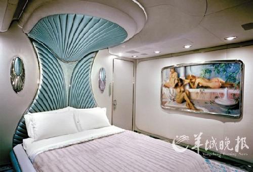 世界最豪华的私人飞机