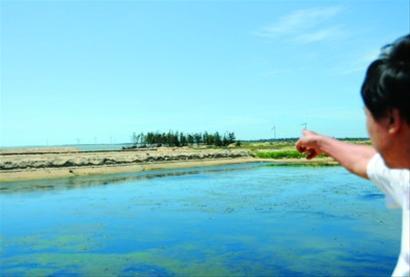 财经资讯 房地产 > 正文  海南省东方市墩头湾的300亩海防林早在2002